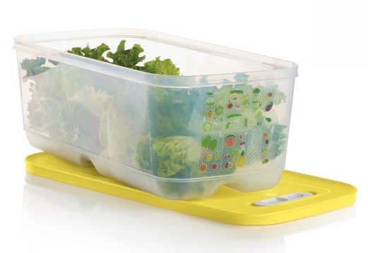 Grand contenant Intelli-frais tupperware